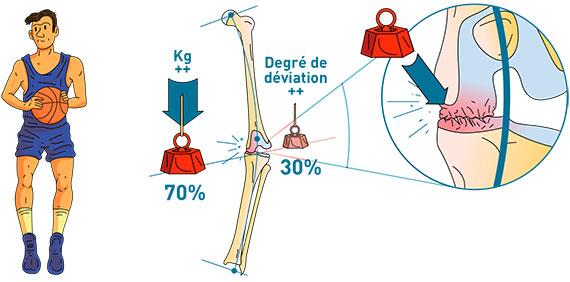 La morphologie osseuse - Dr Mylle, Paris