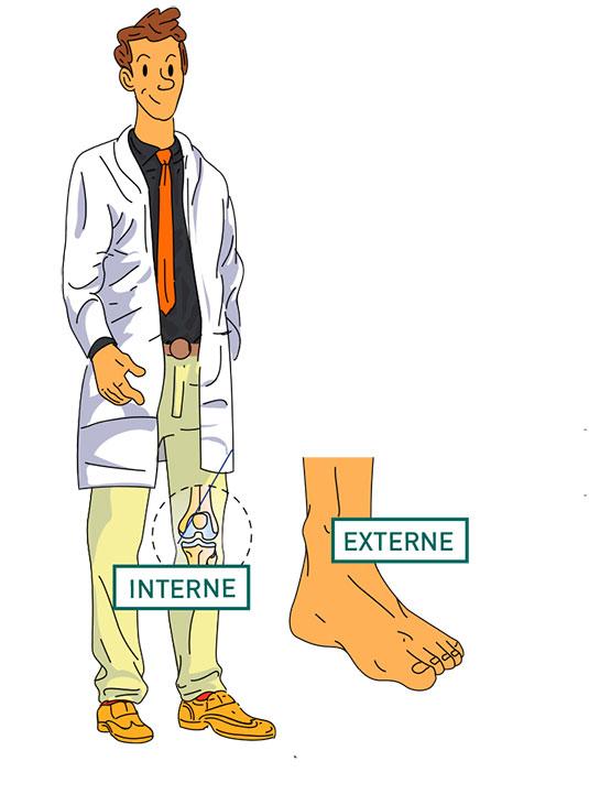 Les 3 compartiments du genou - Dr Maylle, Paris